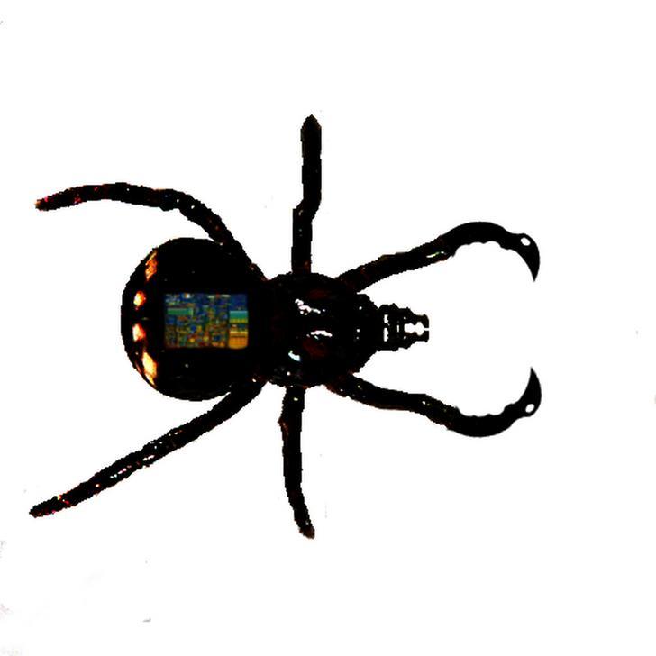 terror-bites.jpg